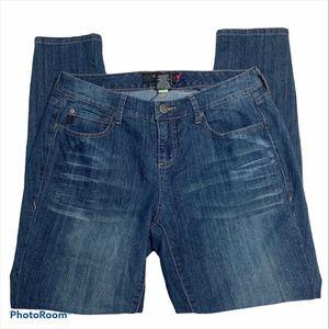 TORRID Denim Skinny Jeans